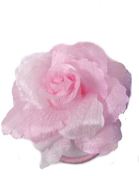 Haarbloem roos licht roze